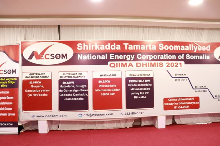 QIIMA DHIMIS 2021